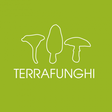terrafunghi_logo_blancvert